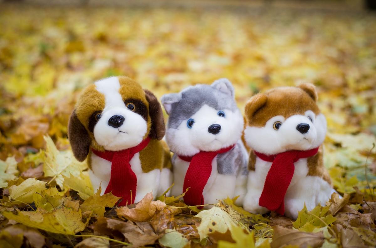 Акция на мягких игрушек собак