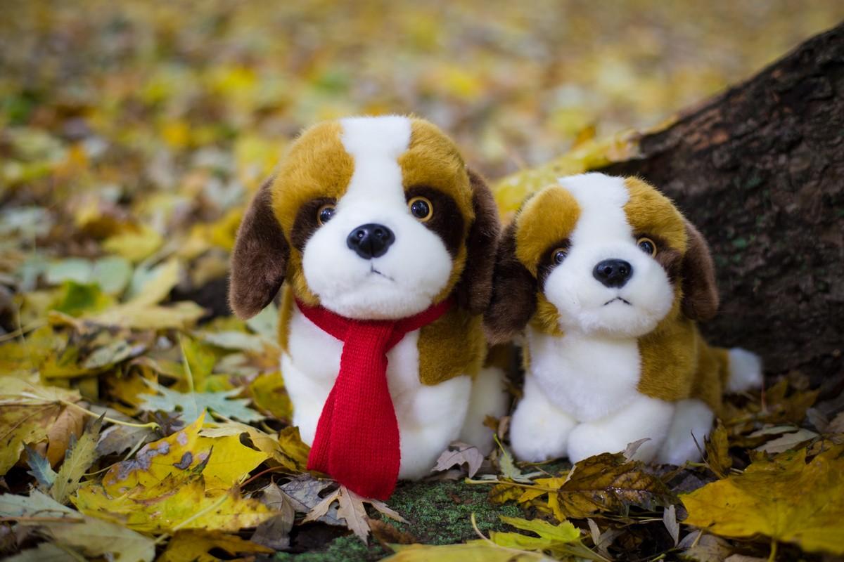 Купить плюшевую собаку