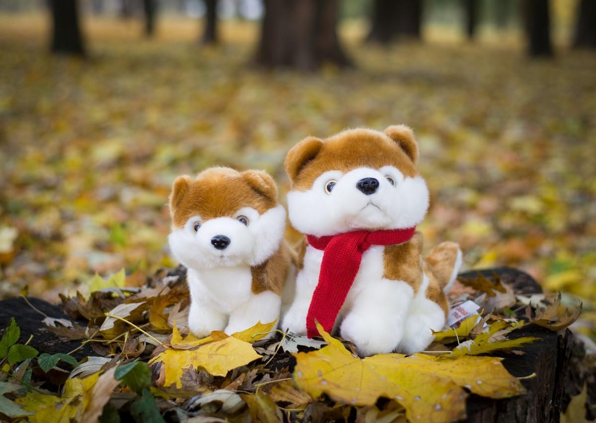 Плюшевая собака Акита Ину
